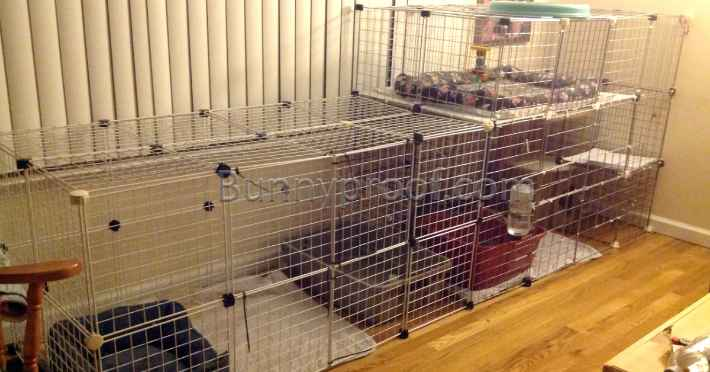 How To Build A Bunny Enclosure