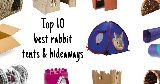 top 10 best bunny tents hideaways