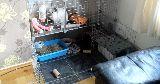 vinyl flooring bunny enclosure